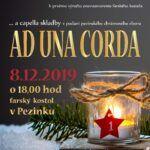 AUC_advent_plagat_2019